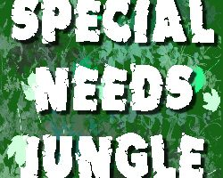 Special Needs Jungle in the Daily Telegraph. What I really think