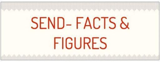 SEN Facts & Figures Infogram