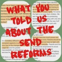 SEND reforms: What YOU told us