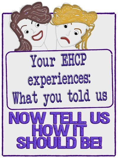 ehcp - what you told us. text as image