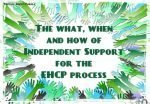 Independent Supporter