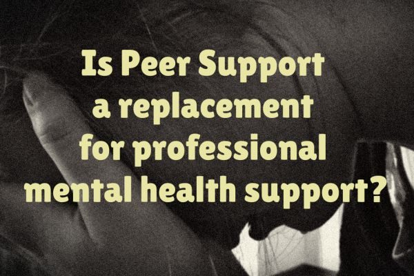 Is Peer Mentoring a replacement for professional mental health support?