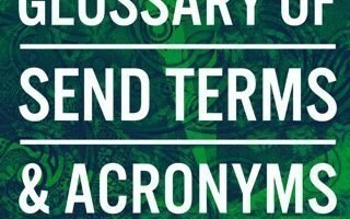 Glossary of SEND terms