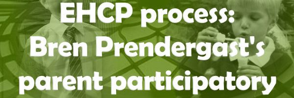Reporting on the  EHCP process:  Bren's  parent participatory research