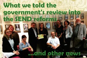 What parents told the government's review into the SEND reforms