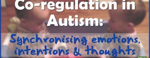 Co-regulation in Autism: synchronising emotions, intentions and thoughts