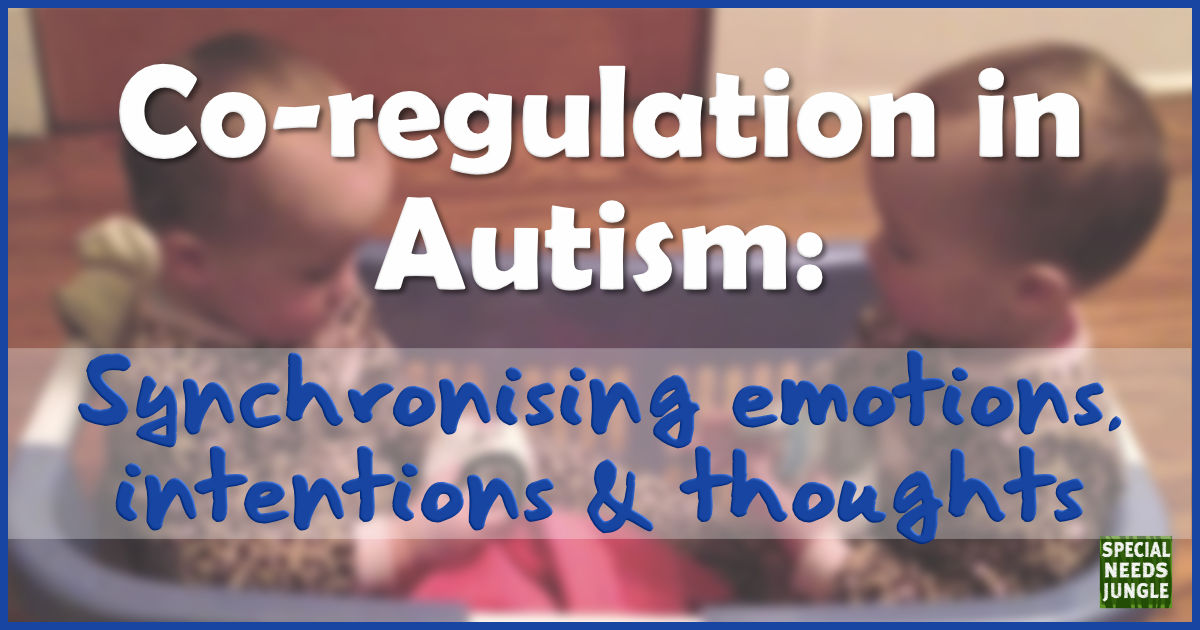 Co-regulation in Autism