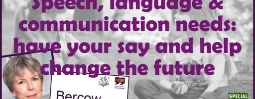 Speech, language and communication needs: have your say and help change the future