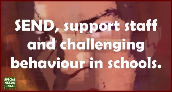 challenging behaviour title image