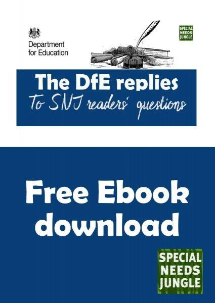 cover for DfE replies ebook
