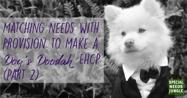 Dog in a bow tie with the words Matching needs with provision to make a dog's doodah EHCP (Part 2)