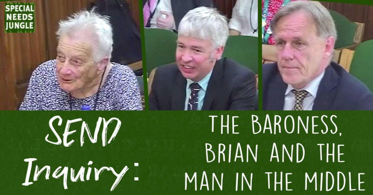 SEND Inquiry: The baroness, Brian and the man in the middle