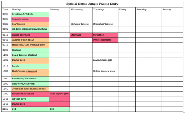 Special Needs Jungle Activity Pacing Diary