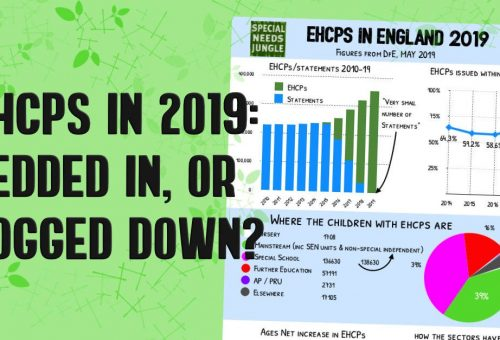 EHCPs in 2019: Bedded in, or bogged down?