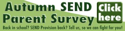 Autumn SEND Survey Click Here