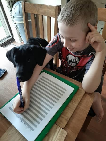Hudson with Willow doing his work