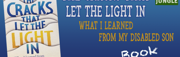 The Cracks That Let the Light In – Book Giveaway